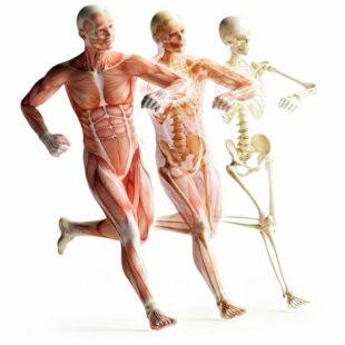 筋骨同调祛痛术