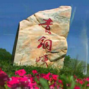 泾州情古峡缘