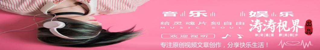 涛涛视界 banner