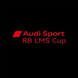 奥迪运动R8LMS杯