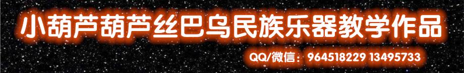 小葫芦葫芦丝双管巴乌民乐 banner