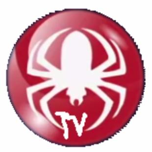 蜘蛛电视直播软件