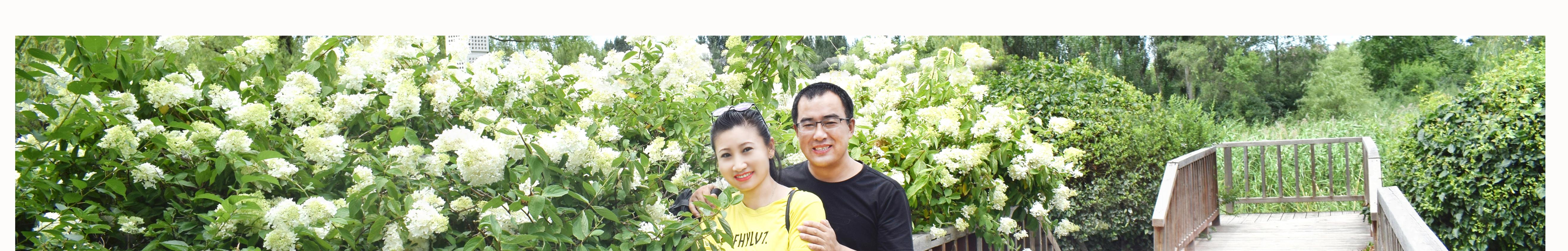 春暖花开工作室 banner