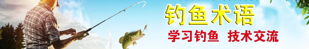 钓鱼术语 banner