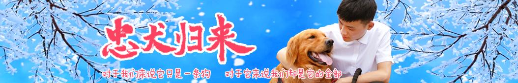 禾星传媒 banner