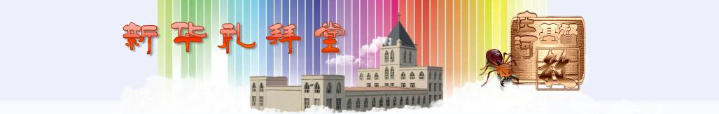 老羊mv banner