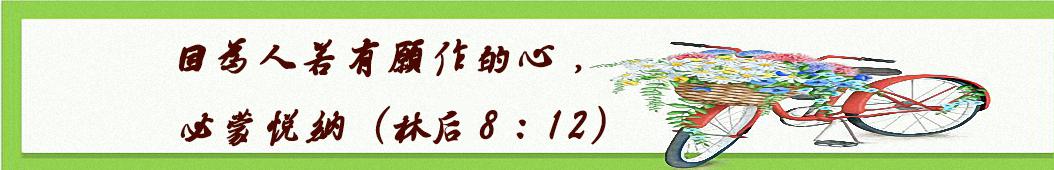 微光PPP banner