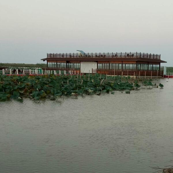 大湖金瑶海XPJJ
