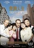 美滿人生(2006)