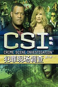 犯罪现场调查 第11季(2010)