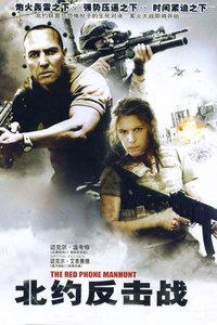 北約反擊戰(2010)