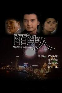 陌生人(1999)