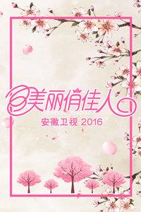 美麗俏佳人 安徽衛視 2016