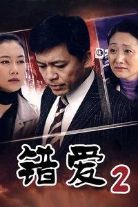 错爱2(2013)