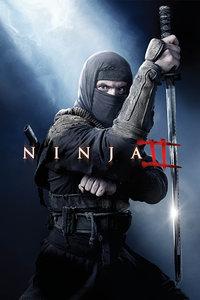 忍者2:撕裂的暗影