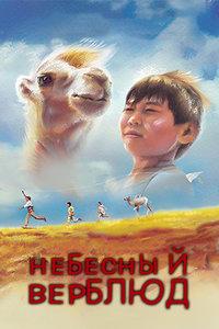 天上的骆驼