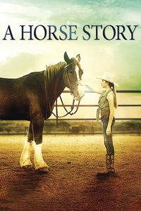 马的故事(电影)