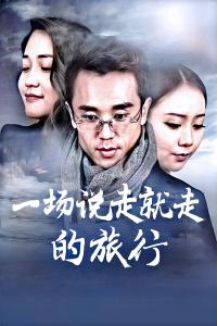 一場說走就走的旅行(2017)