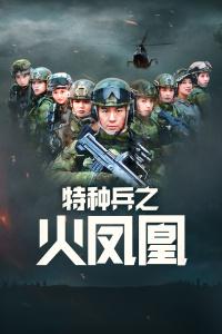 特种兵之火凤凰 DVD版海报