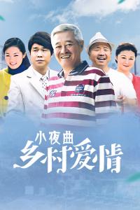 乡村爱情小夜曲(2012)