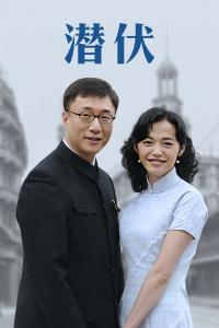 潛伏(2009)