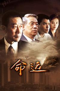 命運(2013)
