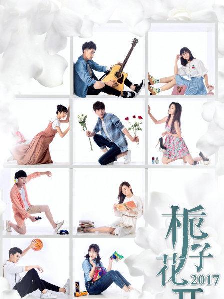栀子花开2017(国产剧)
