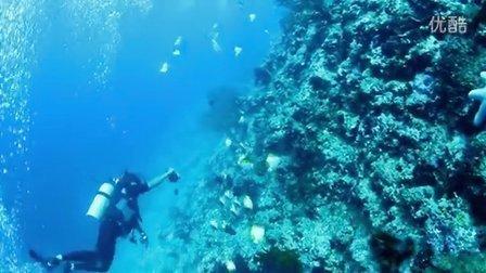 到冲绳去潜水-1