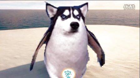 大海解说 模拟企鹅 你见过这么逗比的企鹅吗?