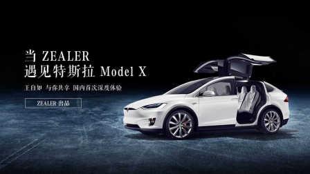 「ZEALER 出品」当ZEALER遇见特斯拉Model X