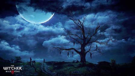 【紫雨carol】《巫师3:狂猎》全剧情解说08【家家有本难念的经01】
