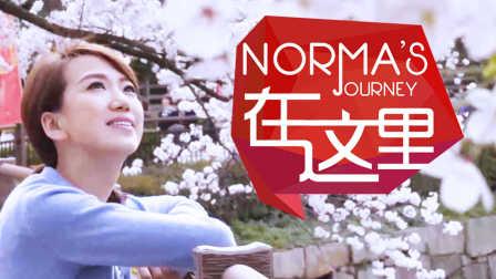 【日日煮】Norma在这里 - 同一樱树下