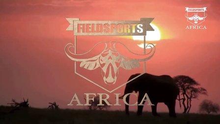 预告片  獵奇·狂野非洲