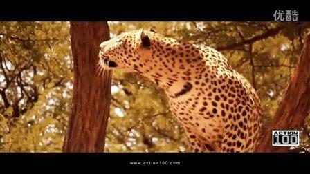【ACTION100 旅游宣传片】纳米比亚