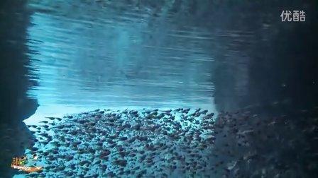 青之洞穴【琳时出发--冲绳③】