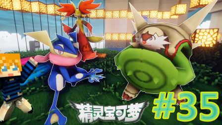 【XY小源 我的世界】1.10.2神奇宝贝 第五季 第35期 甲贺忍蛙 妖火红狐 布里卡隆