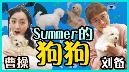 0203 介绍summer的狗狗曹操和刘备!|