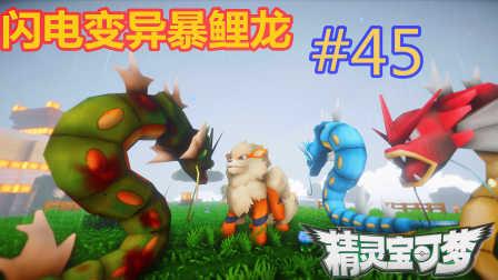 【XY小源 我的世界】1.10.2神奇宝贝 第五季 第45期 闪电变异暴鲤龙