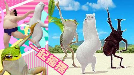 【XY小源】aDanza跳舞的草泥马 看它跳舞 有莫名的喜感 一起摇摆