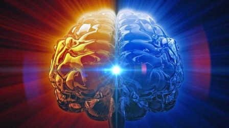 人类大脑的记忆容量有多少?结果很残酷:还不如一个小U盘!