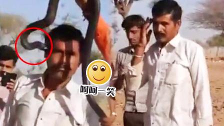 【呵呵一笑】印男子与蛇合照被咬中毒身亡 泰国网吧飞入蛇全员暴走