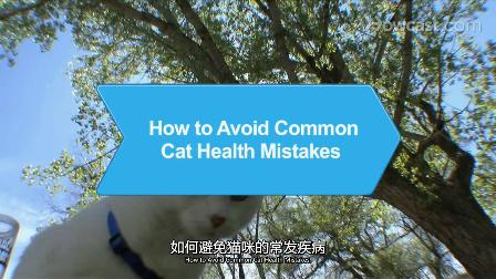 如何避免猫咪的常发疾病_宠物护理_视频听译_特兰斯科