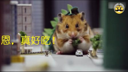 超萌短片,小仓鼠吃了化学废料变异哥斯拉吃遍整个城市!