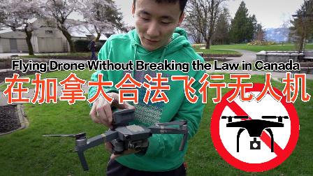 米哥Vlog-353:知道这些么?无人机95%都是非法飞的