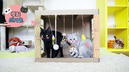 铲屎官自制升级版猫咪玩具纸箱,猫主子玩得合不拢腿!【举起爪儿来】