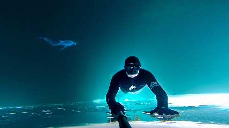 这视角好很独特~在水下贴着冰面潜水!