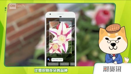 更安全更流畅AndroidO正式发布|iPhone 8 真机谍照曝光【潮资讯】