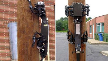 壁虎机器人,会爬墙爬电线杆,要是小偷买了会怎样