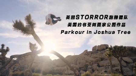 【洁癖男】英国Storror团队约书亚树国家公园跑酷作品