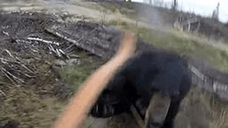 惊魂15秒! 猎人搏斗黑熊死里逃生并拍下了全过程